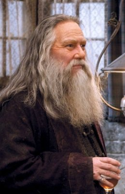 What was the name of Professor Dumbledore's sister and