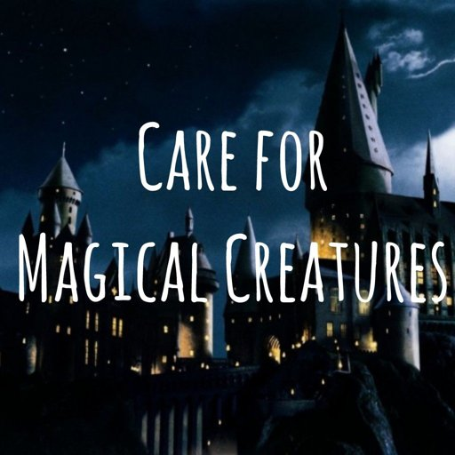 Care Of Magical Creatures Wiki Harry Potter Rp Amino