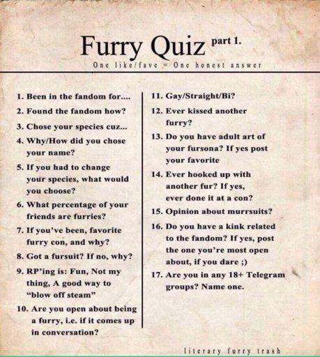 Furry Quiz | Furry Amino
