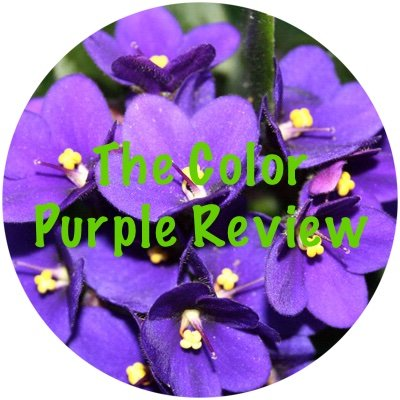The Color Purple Review | Books & Writing Amino