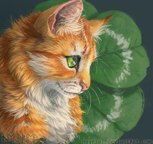 Коты Воители (Рыжик и Долгохвост)-Thunder - YouTube   482x512