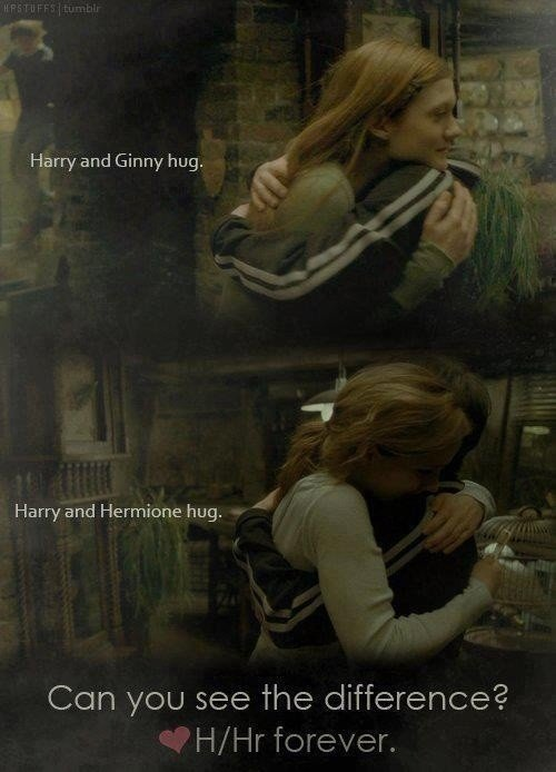 Can You See The Difference? | Harry Potter Amino
