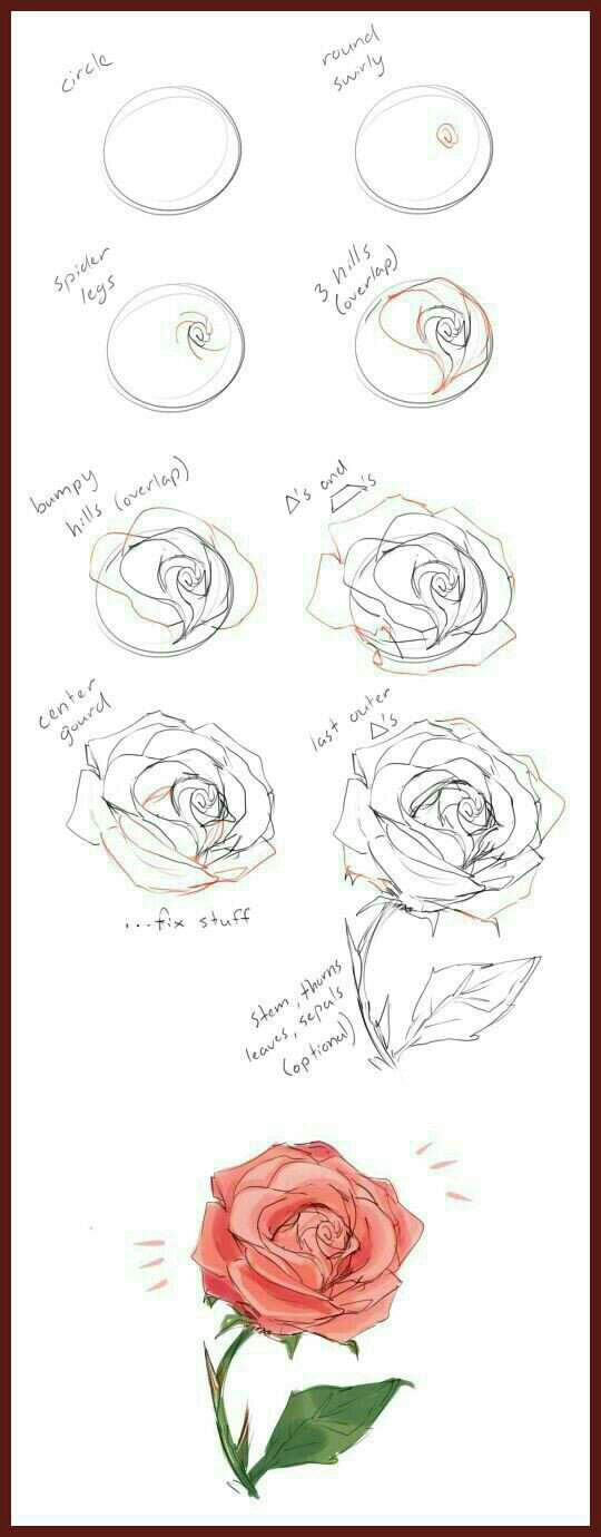 Como Dibujar Una Rosa Dibujantes Otakus Gamers Amino
