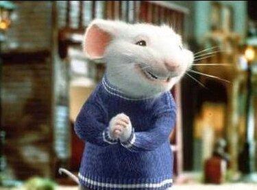Stuart Little Is A Rat Bastard Dank Memes Amino