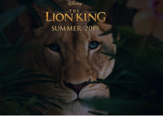 The Lion King 2019 Live Action Pictures The Lion Guard Amino