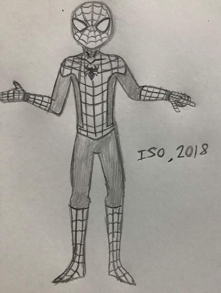 Spiderman pencil sketch marvel amino