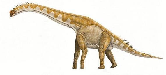Creature Idea: Giraffatitan | Ark Survival Evolved Amino
