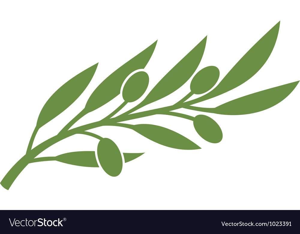 Extending An Olive Branch Cartoon Amino