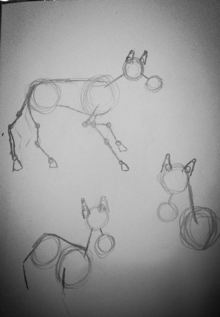 Anatomy Drawings Horse Equestrian Amino