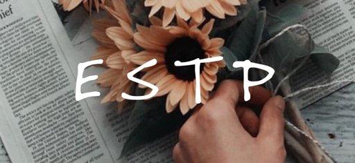 ESTP | Wiki | Myers Briggs [MBTI] Amino