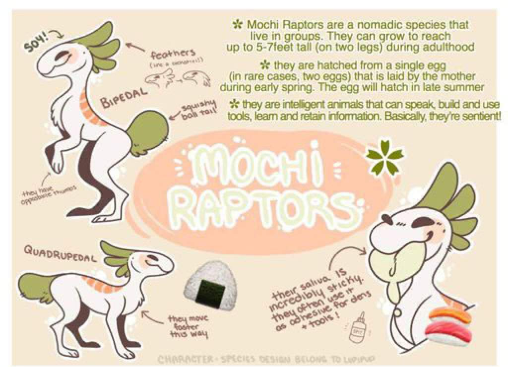 mochi raptor species wiki wiki coinadopts amino amino apps