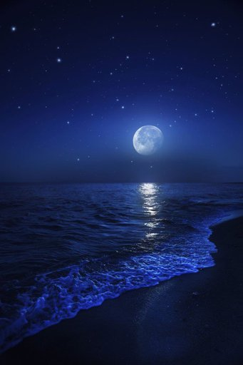 The Moon's Purpose