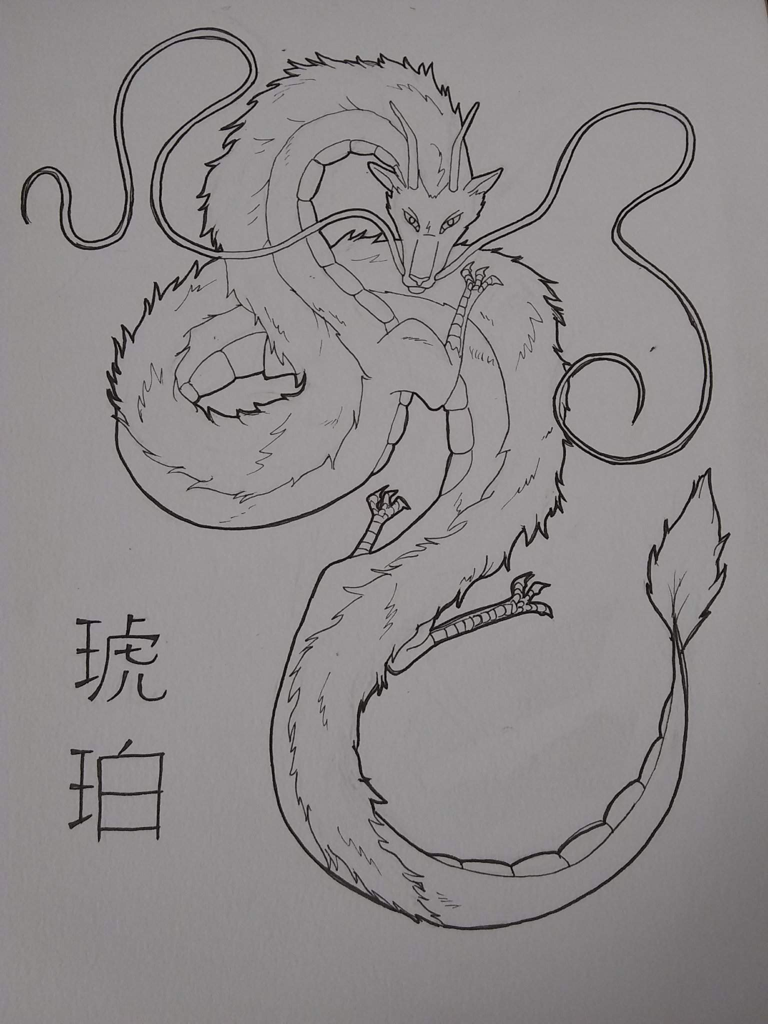 Spirited Away Haku In His Dragon Form Studio Ghibli Amino