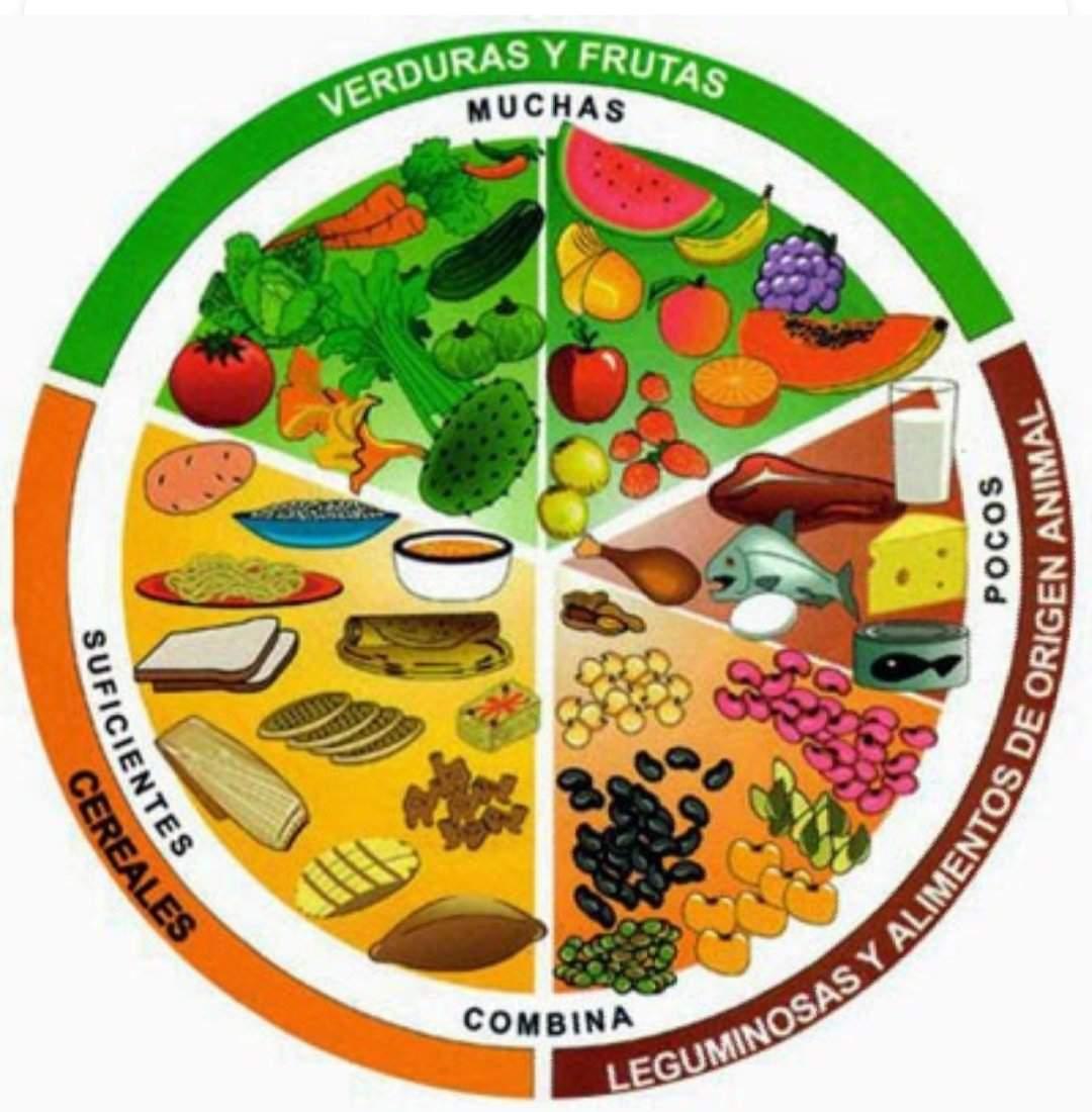 dieta hipocalorica)
