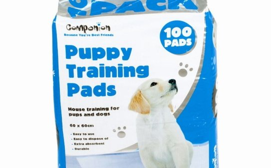 Top 3] what are puppy training pads | SweetPuppies Amino