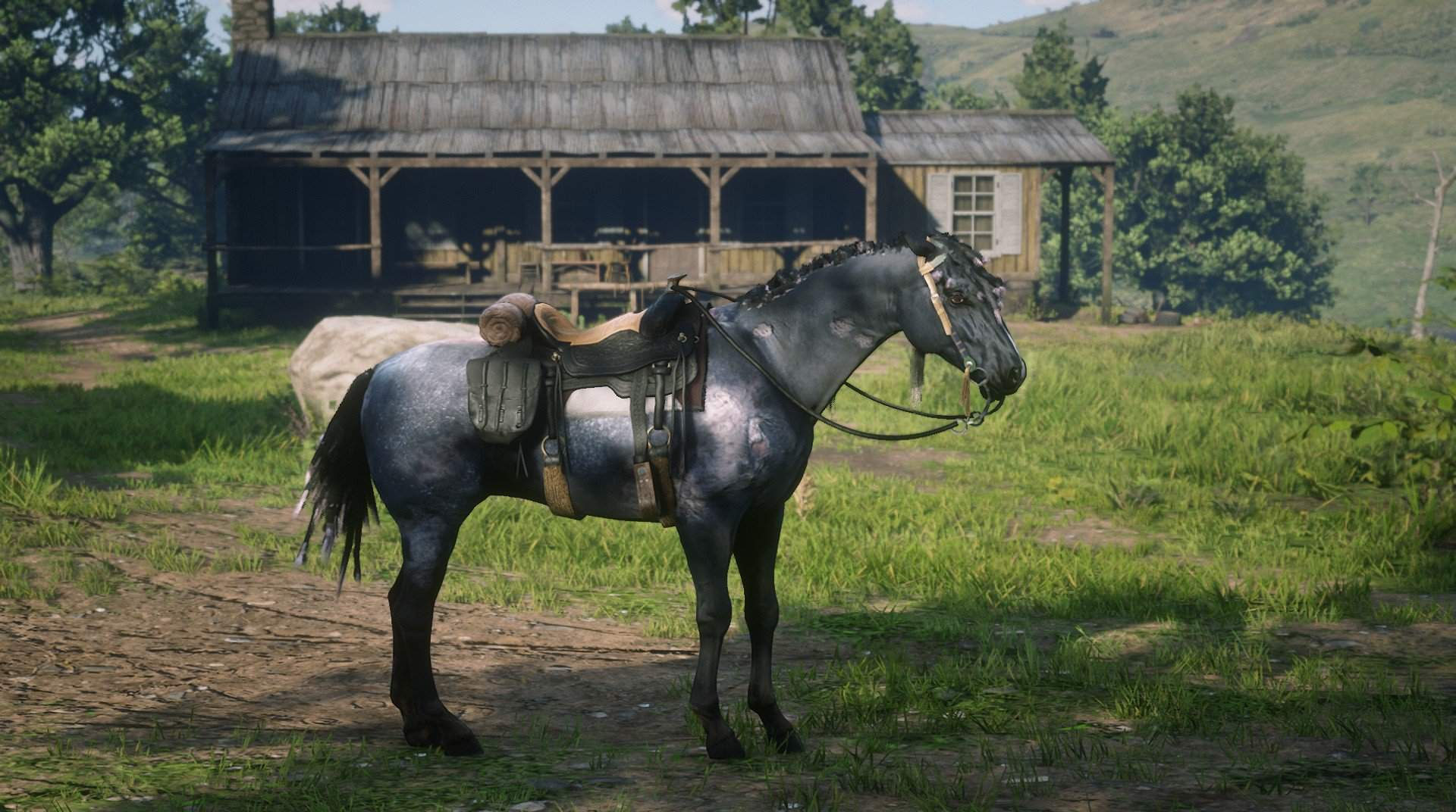 My Favorite Horse For Aesthetic The Red Dead Redemption Amino