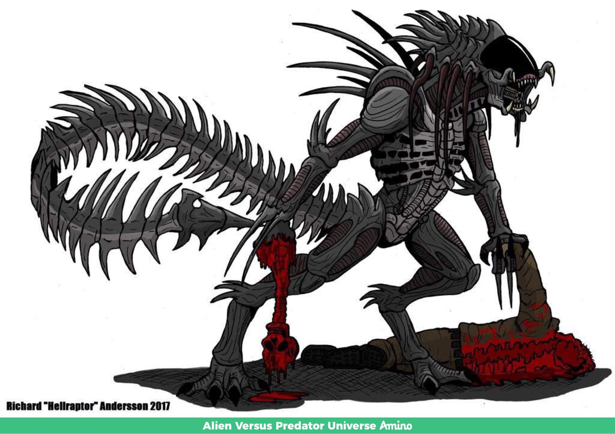 My Xenomorph Oc   Wiki   Alien Versus Predator Universe