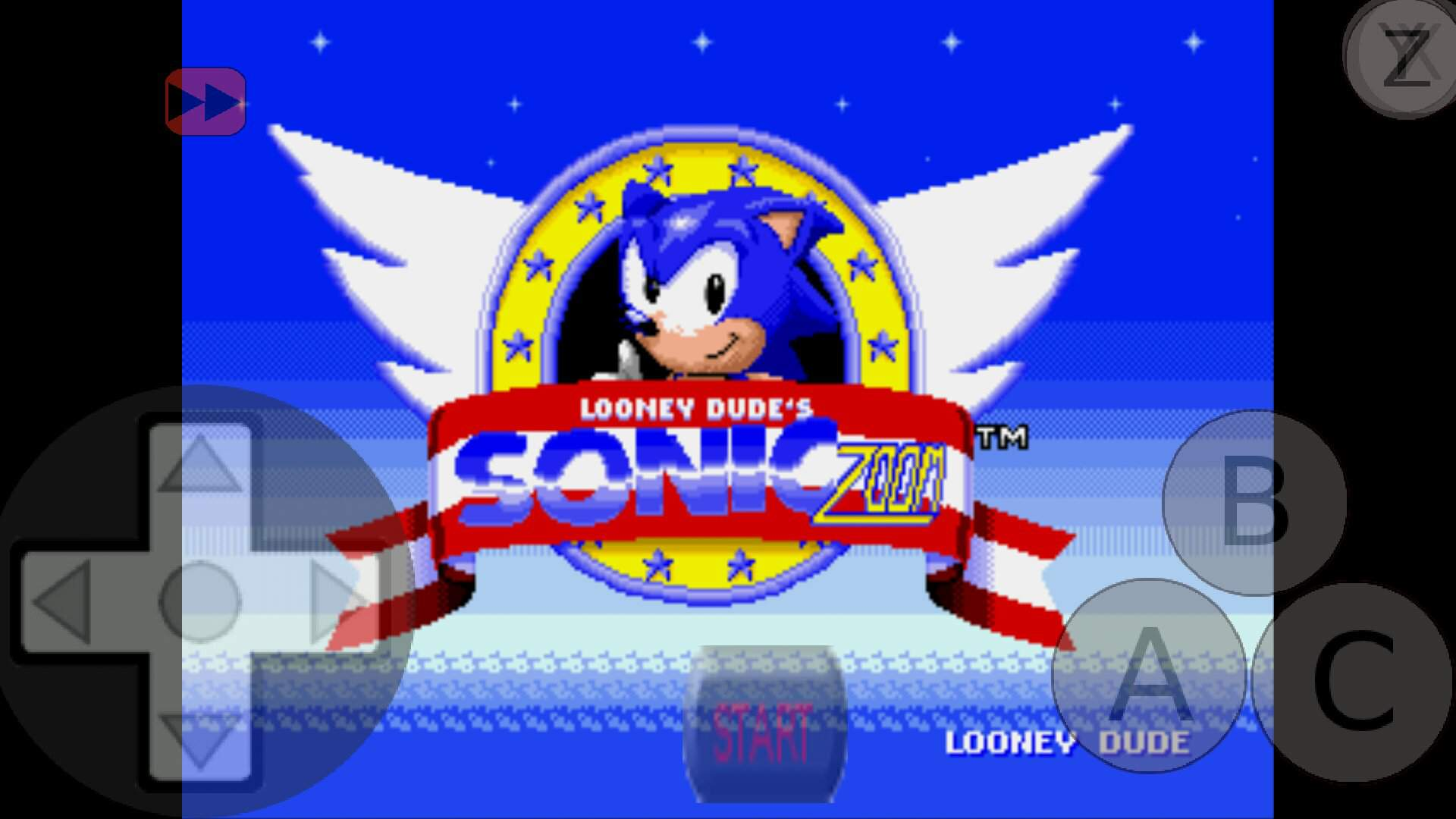 I Like The Hack Sonic Zoom So Sonic The Hedgehog Amino