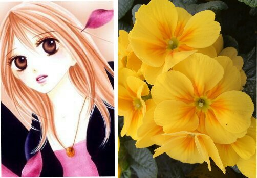Flowers For You Day 26 Anime Amino