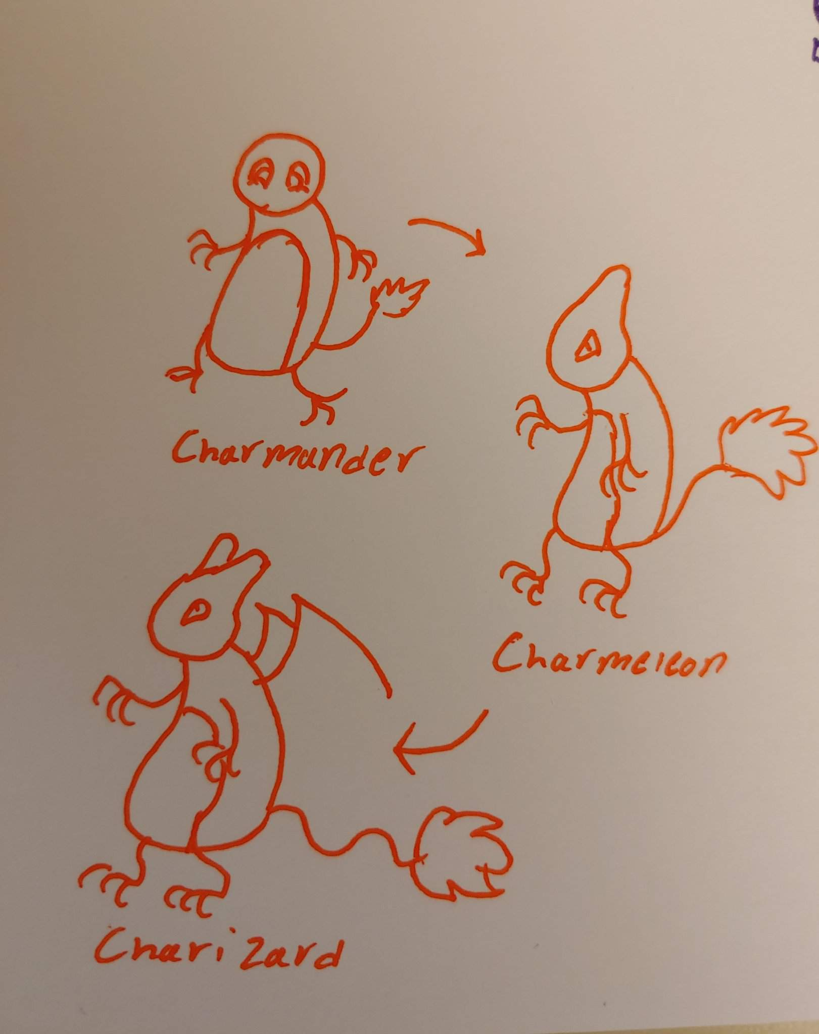 Pokemon Charmander Evolutions Wallet Laser Engraved