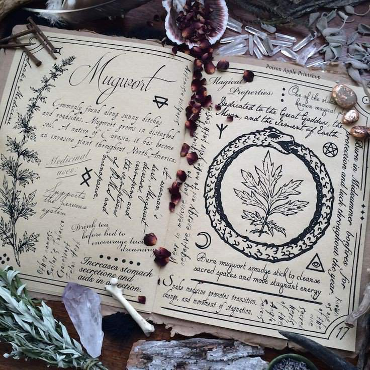 Grimoires, Shadows, & Mirrors: Magickal Books | Pagans & Witches Amino