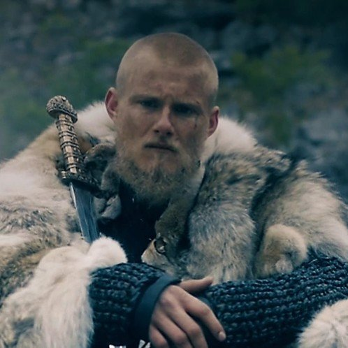 𝔅𝔧𝔬𝔯𝔫 ℑ𝔯𝔬𝔫𝔰𝔦𝔡𝔢 The Vikings Br Amino