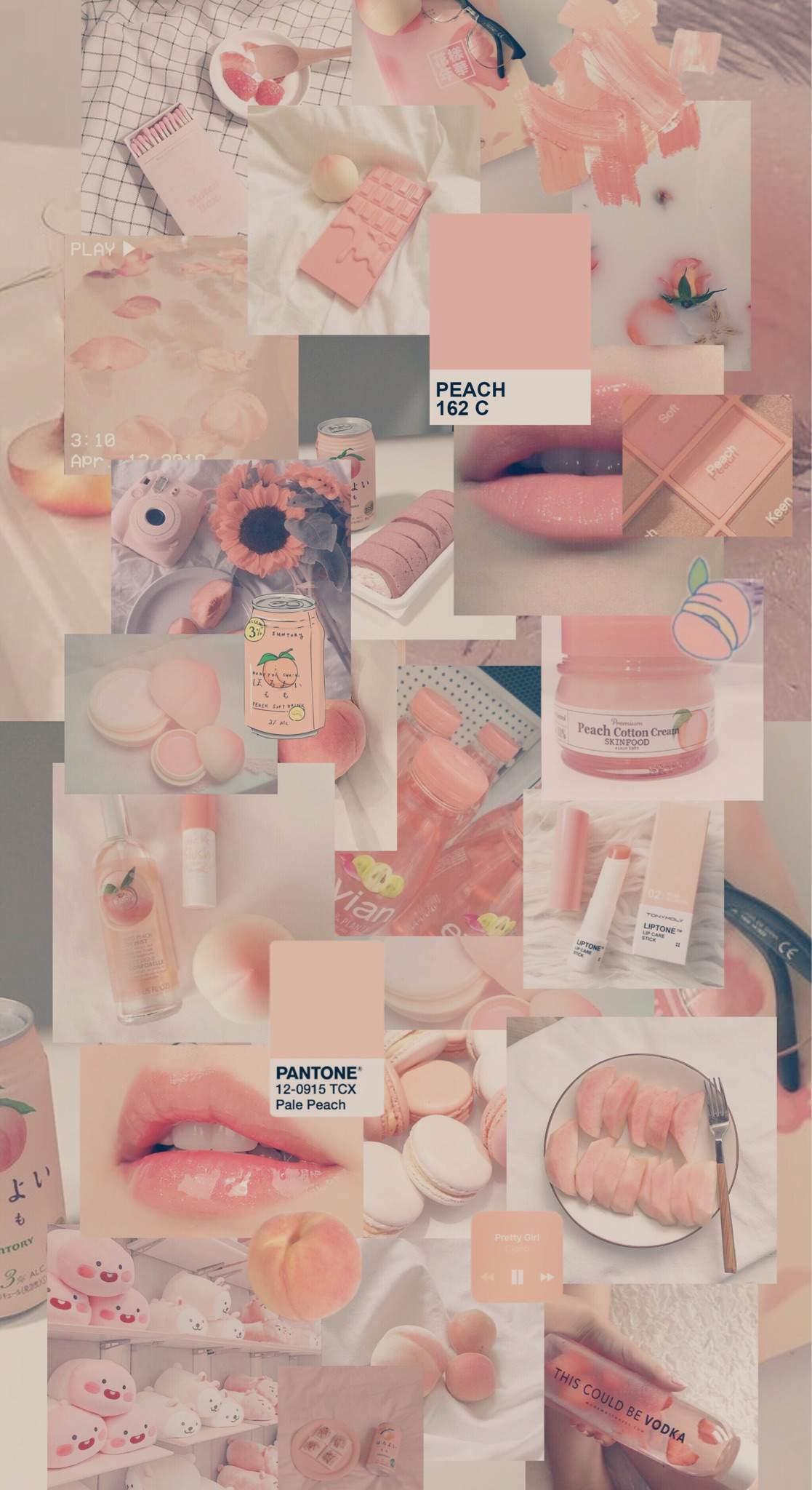 Peachy Cream Wallpaper Aesthetics Amino