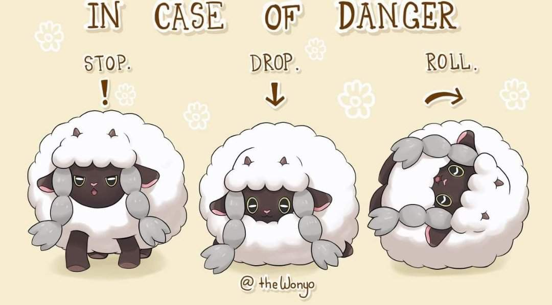 Wooloo Meme Pokemon Amino