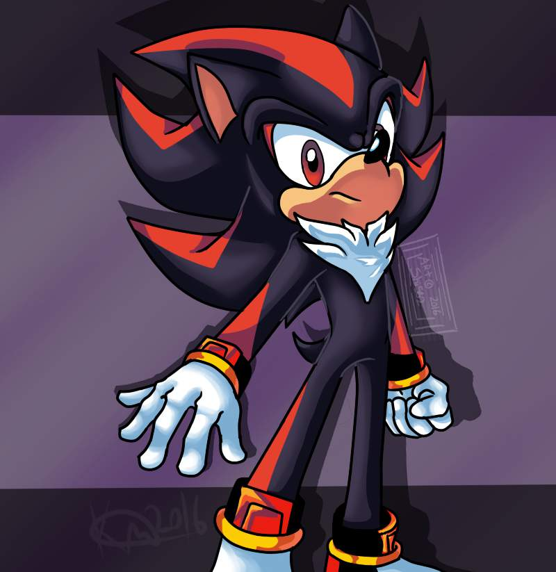 Style Exercise With Shadow Sonic The Hedgehog Amino