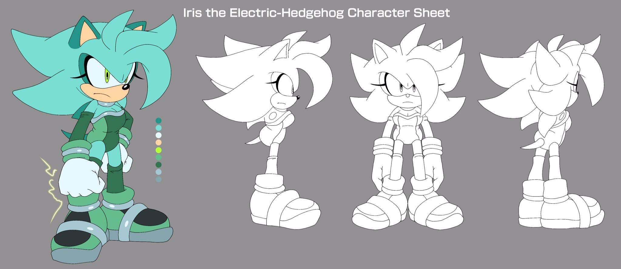 Iris The Hedgehog Bio Wiki Sonic The Hedgehog Amino