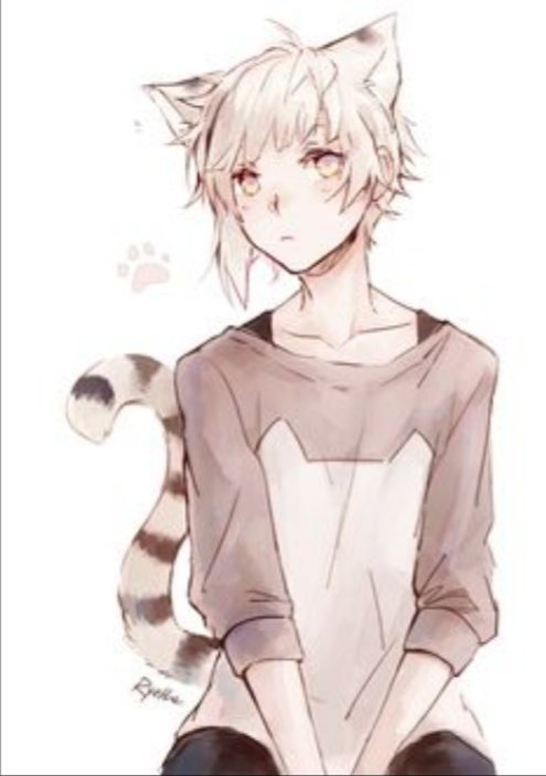23+ Handsome White Haired Anime Boys Pictures