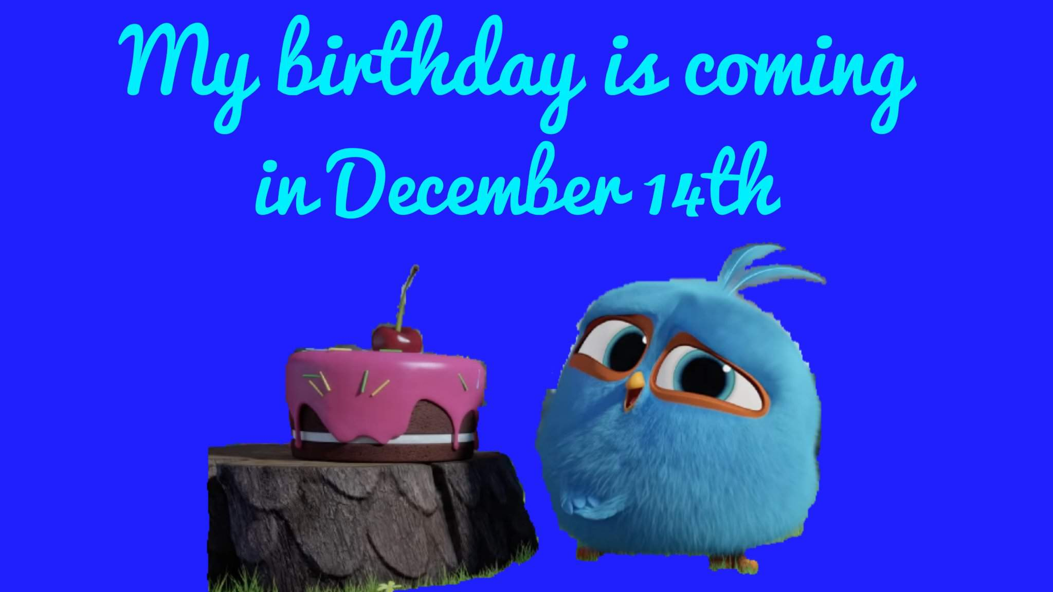 On December My Birthday Is Coming Soon Everyone Please Do Something To Wish My Birthday Angry Birds Fans Amino Amino