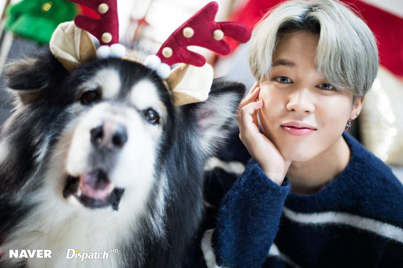 Dispatch X Naver Bts Is All Army Want For Christmas Park Jimin Amino