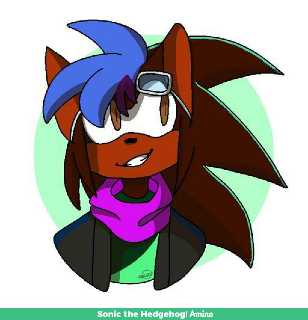 Komerl Aden Hedgehog 2020 Wiki Sonic The Hedgehog Amino