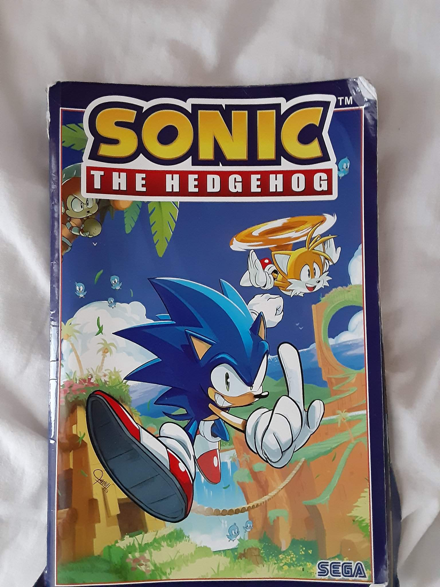 Sonic Idw Comic Vol 1 Fallout Artwork Review Sonic The Hedgehog Amino