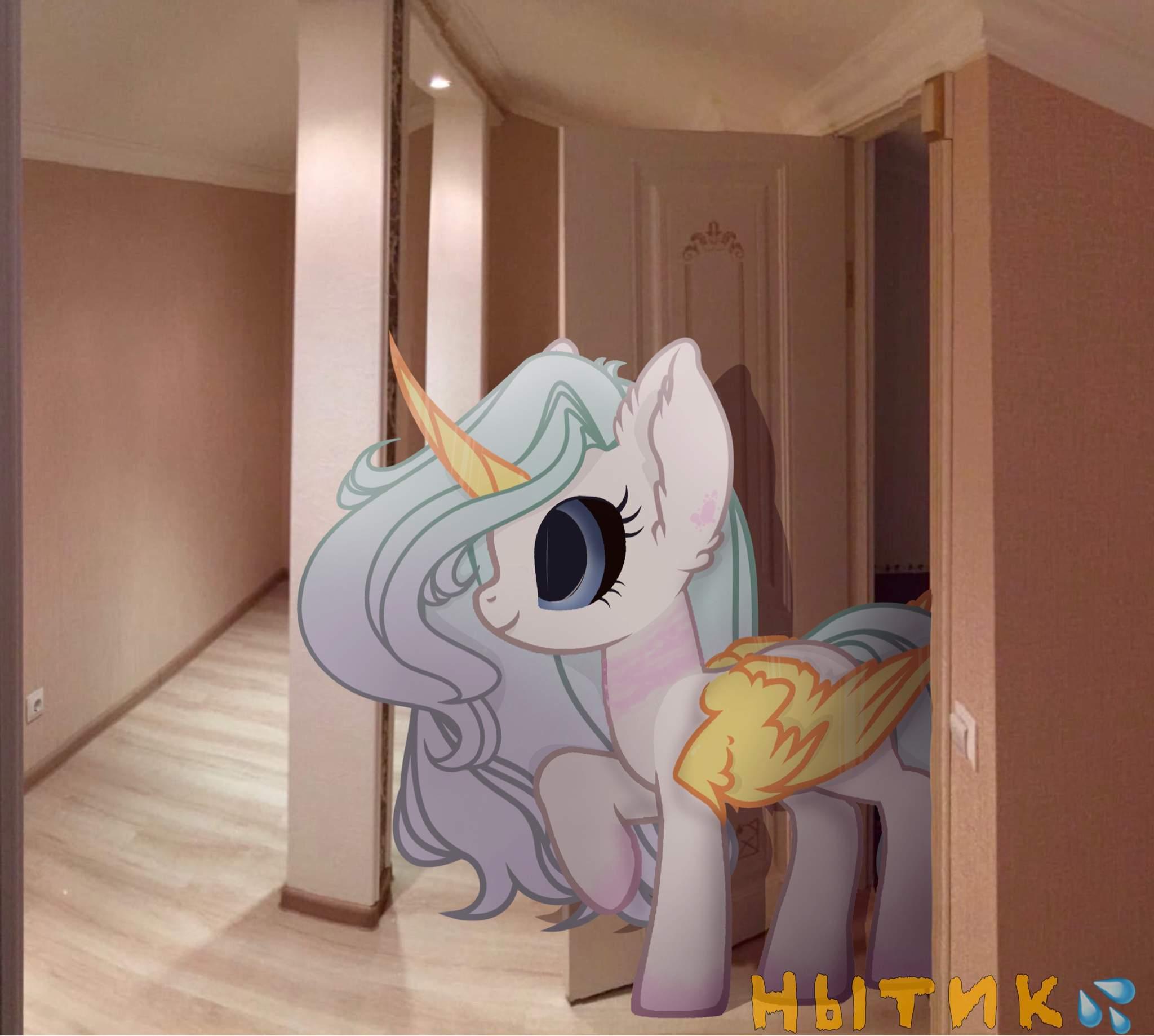Слив Личных Вещей Пони Вк