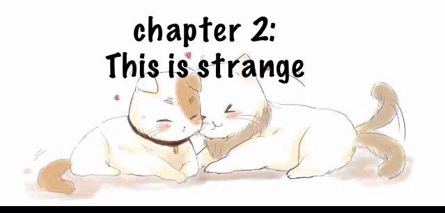 Chapter 2) Neko!Hetalia x Reader | Books & Writing Amino