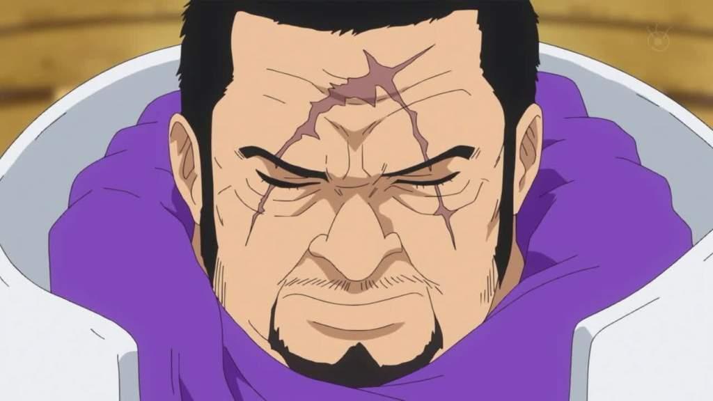One Piece Fujitora Theory | Anime Amino