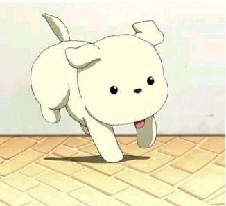 favorite anime pet anime amino