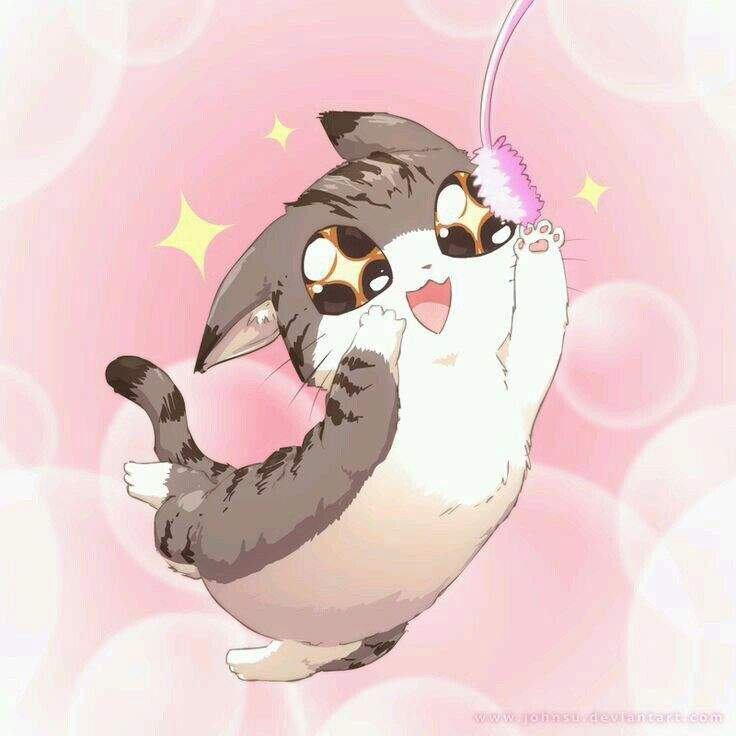 Neko As We All Know Is The Japanese Word For Cat In Some Schools It Taught That Kanji Also A Main Compliment To Something Being