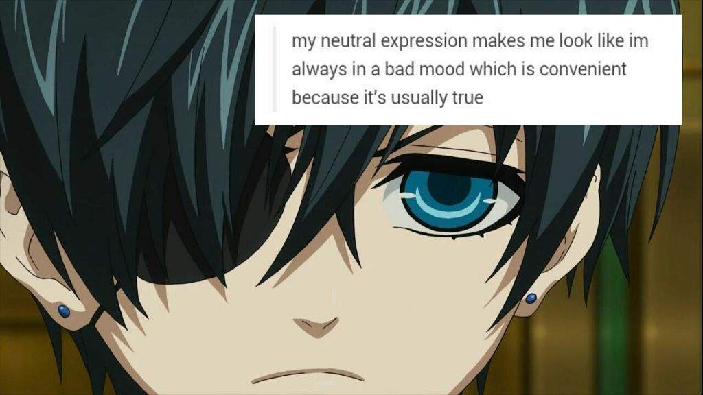 Funniest Meme Tumblr : Black butler funny pictures anime amino