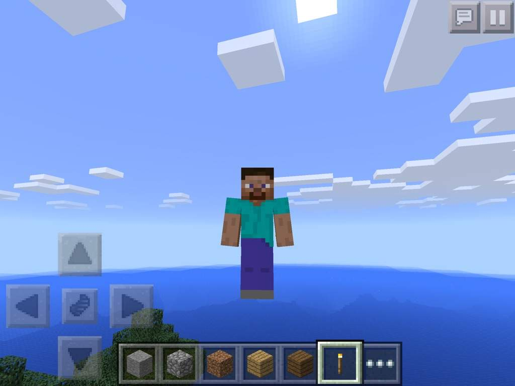 Skin giveaway 11:F11 mode steve or backwards steve!!  Minecraft Amino