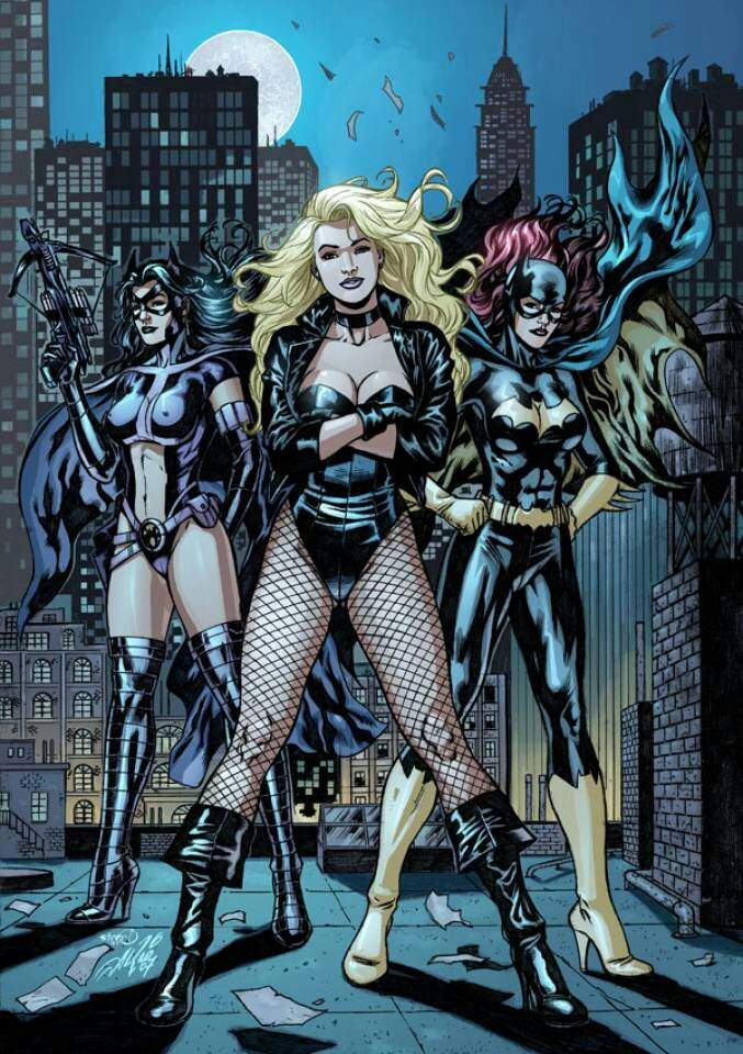 Birds Of Prey Vs The Gotham City Sirens Comics Amino