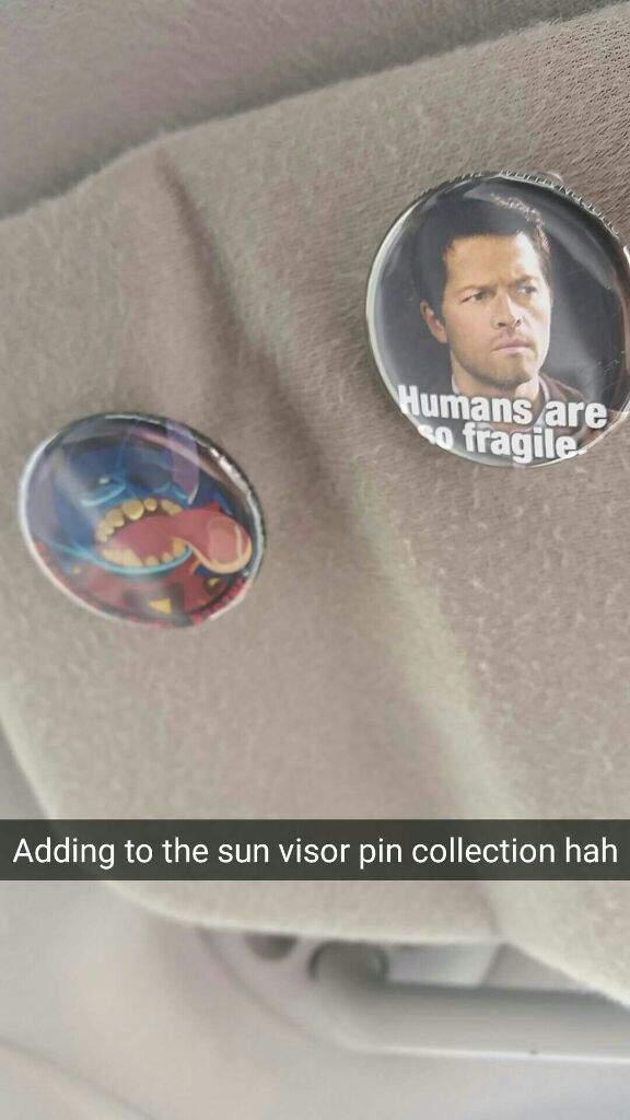 More Pins for my Sun Visor!  ac0c89ea341