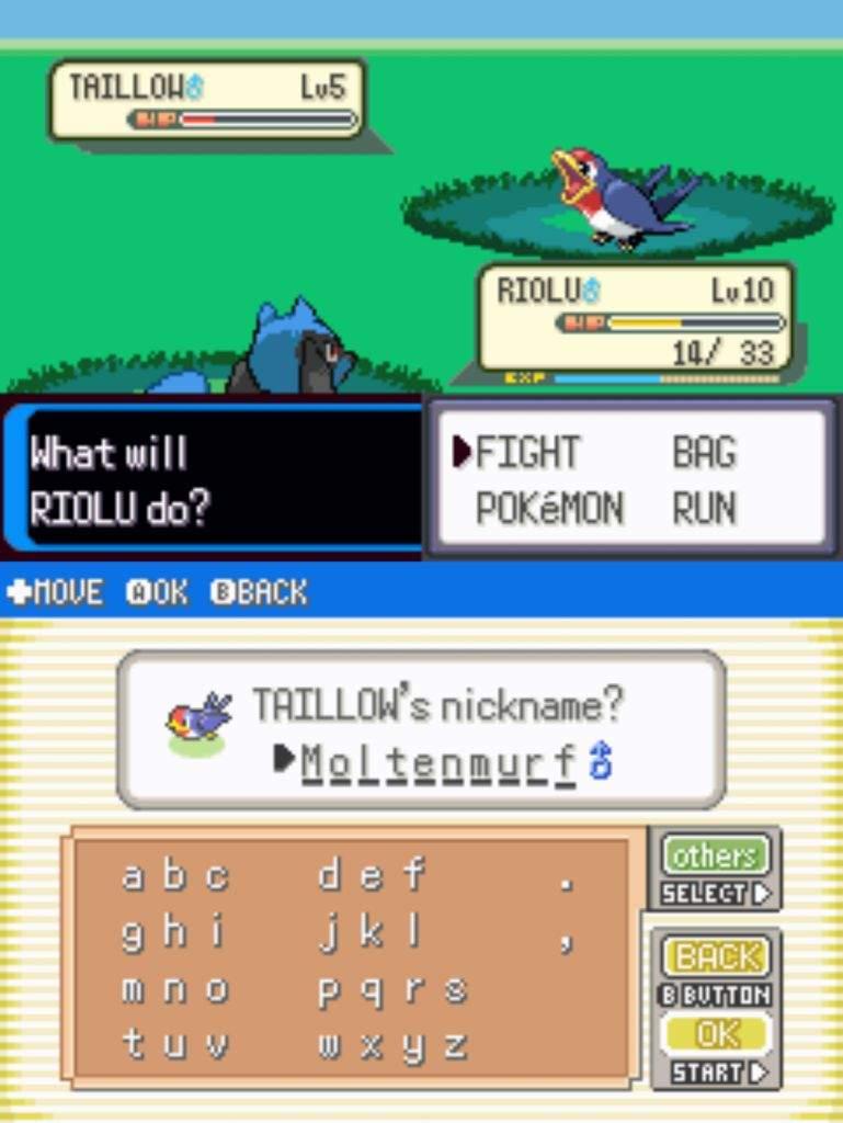 Pokemon resolute physical special split