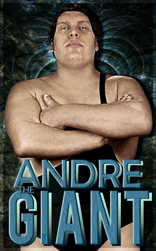 10 stories you may not know about andre the giant wrestling amino