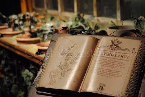 Herbology Class Harry Potter Amino