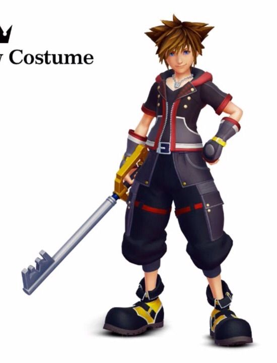 Sora Nightmare Before Christmas Costume.I M Planning To Cosplay Sora In His Kingdom Hearts 3 Outfit