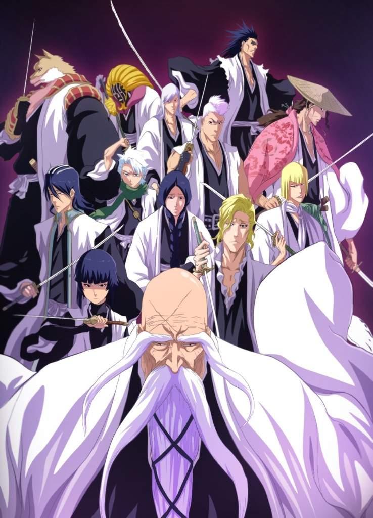 Gotei 13 Explained Anime Amino