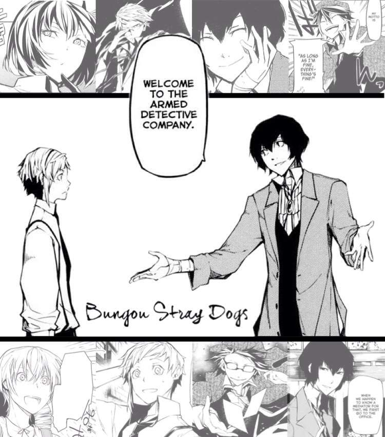 Bungou Stray Dogs Any Good